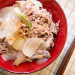 元氣滿滿|日式豬肉丼