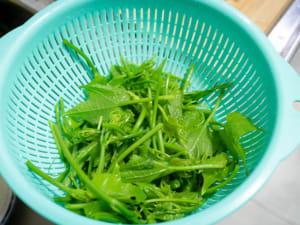 龍鬚菜拌胡麻醬